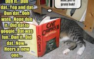 Funny Cat Books 27 Free Wallpaper