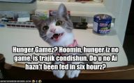 Funny Cat Games 18 Background Wallpaper