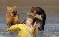 Funny Cat Running 17 Hd Wallpaper