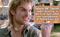 Funny Celebrity Facts 20 Desktop Background