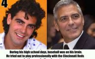 Funny Celebrity Facts 23 Hd Wallpaper