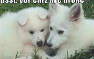 Funny Dog Art 14 Desktop Background