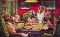 Funny Dog Art 34 Free Hd Wallpaper