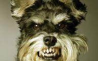Funny Dog Backgrounds 7 Desktop Wallpaper