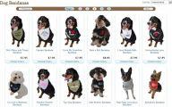 Funny Dog Bandanas 8 High Resolution Wallpaper