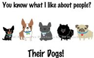 Funny Dog Clips Download 15 Cool Hd Wallpaper