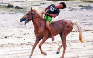 Funny Horse Riding Fails 14 Desktop Background