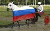 Funny Horse Riding Fails 22 Free Wallpaper