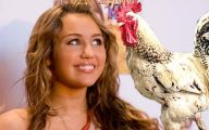 Funny Miley Cyrus Celebrity 28 Hd Wallpaper