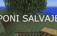 Funny Minecraft Fails 3 High Resolution Wallpaper