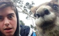 Funny Pictures Of Selfies 7 Widescreen Wallpaper