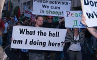 Funny Protest Signs 8 Hd Wallpaper