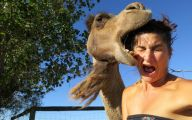 Funny Ugly Selfies 1 Cool Hd Wallpaper