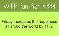Funny Weird Facts 1 Widescreen Wallpaper