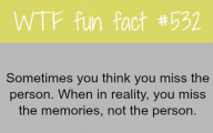 Funny Weird Facts 16 Desktop Wallpaper