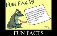 Funny Weird Facts 25 Background