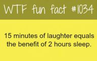 Funny Weird Facts 28 High Resolution Wallpaper