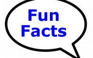 Funny Weird Facts 7 Desktop Wallpaper