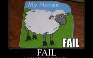 Horse Fail Photos 21 Cool Hd Wallpaper