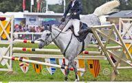 Horse Fail Photos 26 Free Wallpaper