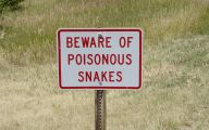 Very Funny Signs 28 Desktop Background