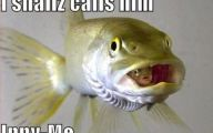 Funny Pictures With Captions 26 Background