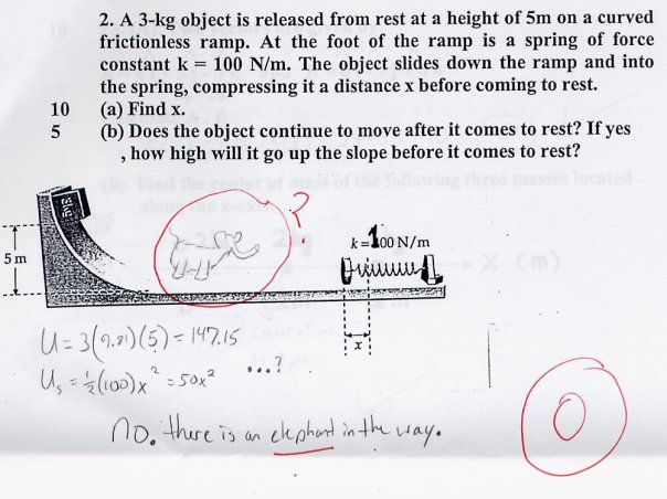 Funny Children's Answers To Exam Questions 12 Free Hd Wallpaper