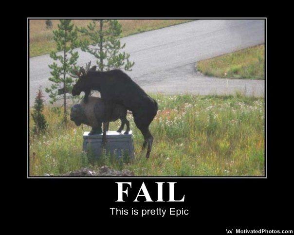 Funny Fails Animals 2 Desktop Background
