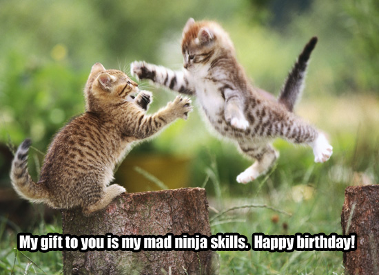 Funny Weird Birthday Wishes 7 Cool Hd Wallpaper