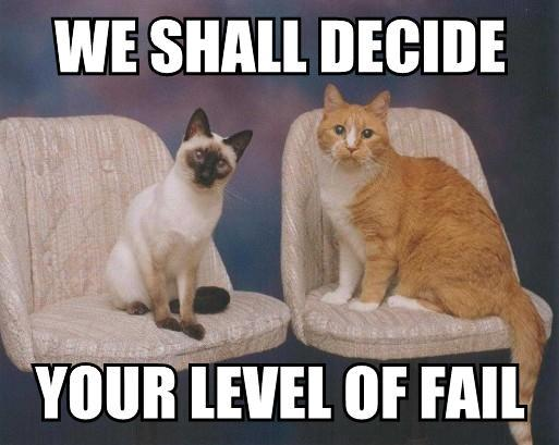 Funny Fail Meme : Funny cat fails widescreen wallpaper funnypicture
