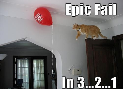 Funny Cat Jump Fails 17 High Resolution Wallpaper
