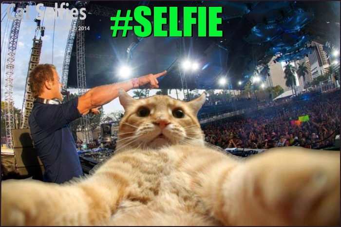 Funny Selfie Pictures 16 Cool Hd Wallpaper - Funnypicture.org