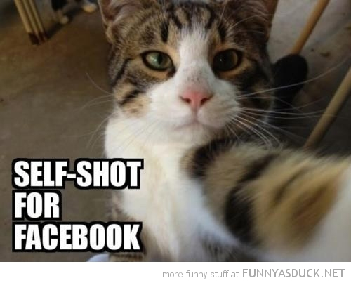 All Funny Selfie Pictures 2 Free Hd Wallpaper