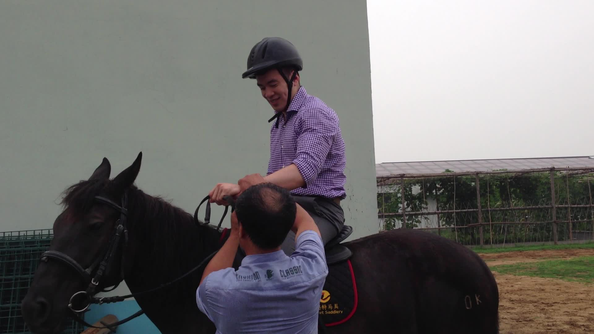 Epic Horse Fail Pictures 30 Hd Wallpaper