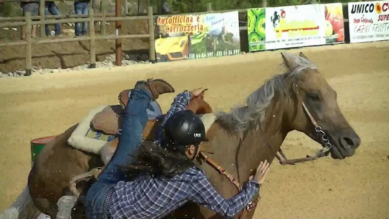 Epic Horse Fail Pictures 6 Background