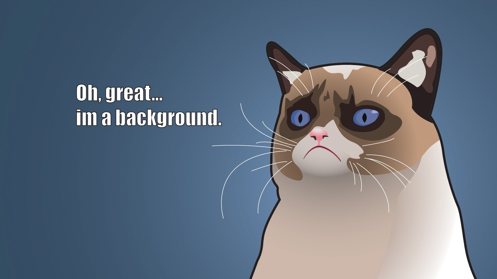 Funny Cartoon Cat 3 Background Funnypicture Org