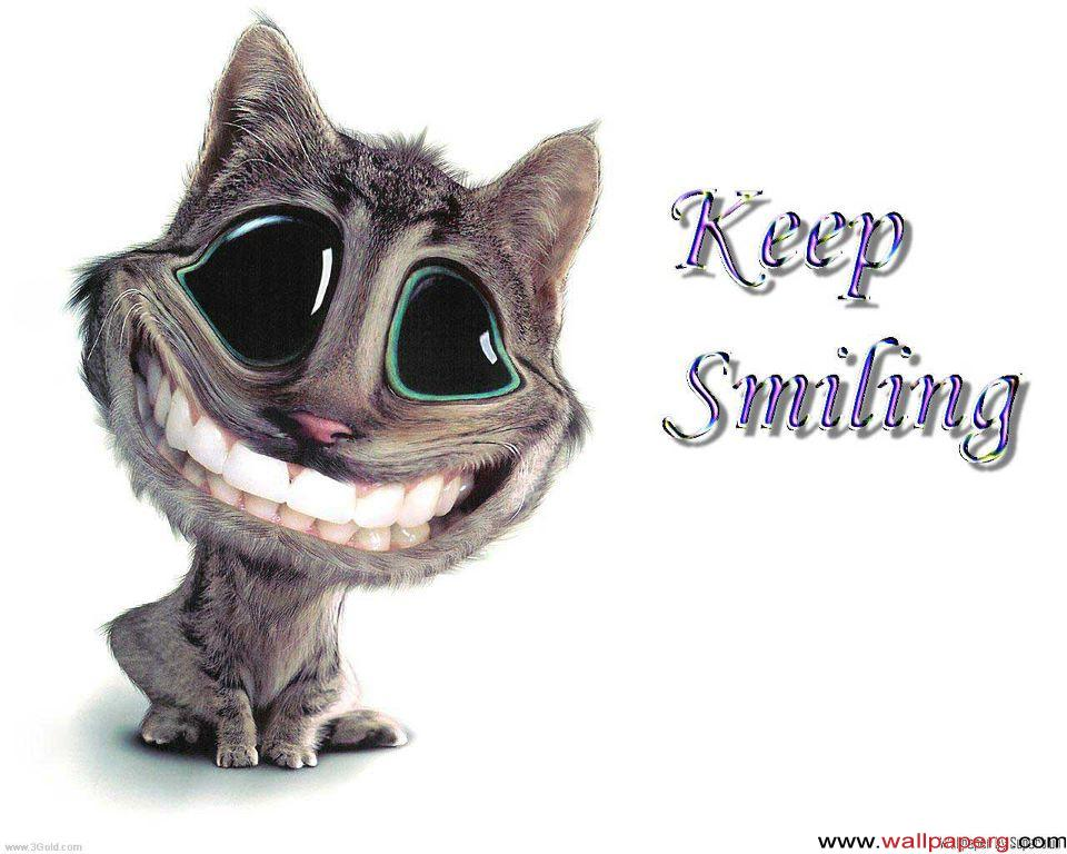 Funny Cartoon Cat Pictures 18 Free Hd Wallpaper Funnypictureorg