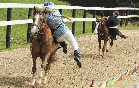 Funny Horse Riding Fails 13 Background Wallpaper ...