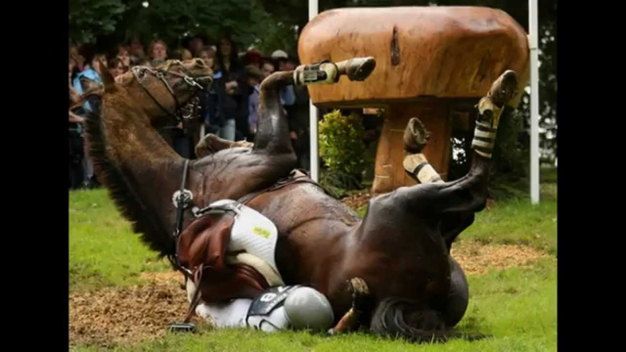 Funny Horse Riding Fails 7 High Resolution Wallpaper