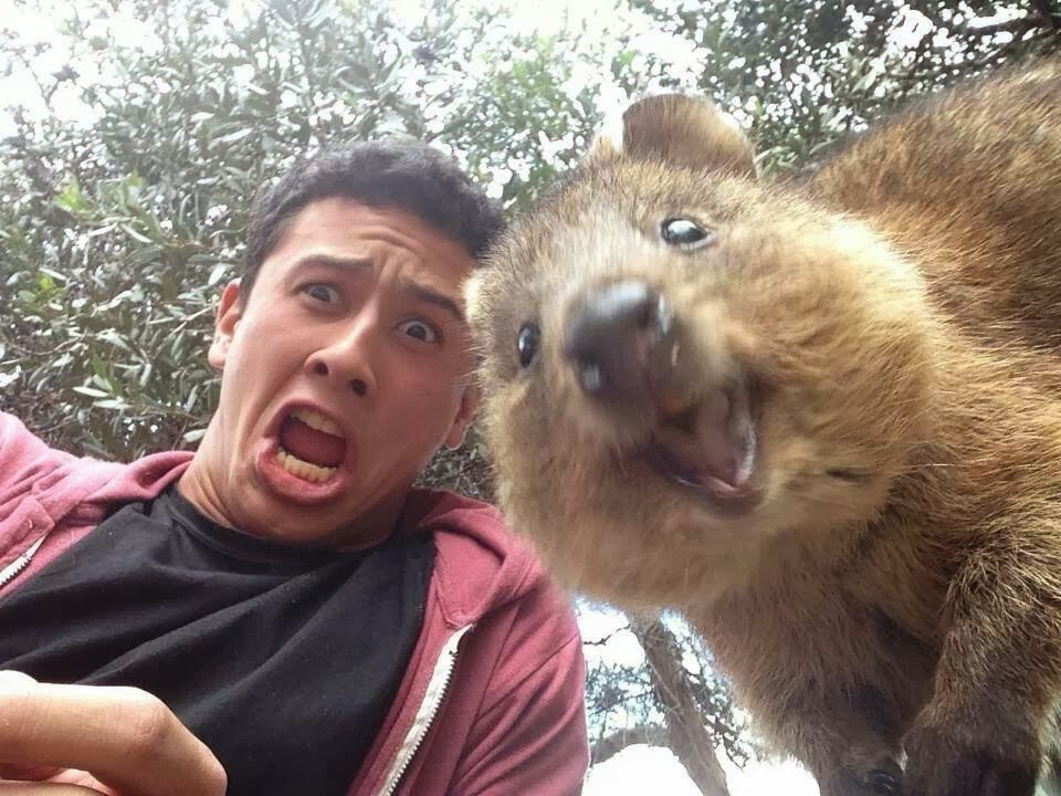 Funny Selfie Photo Gallery 18 Wide Wallpaper