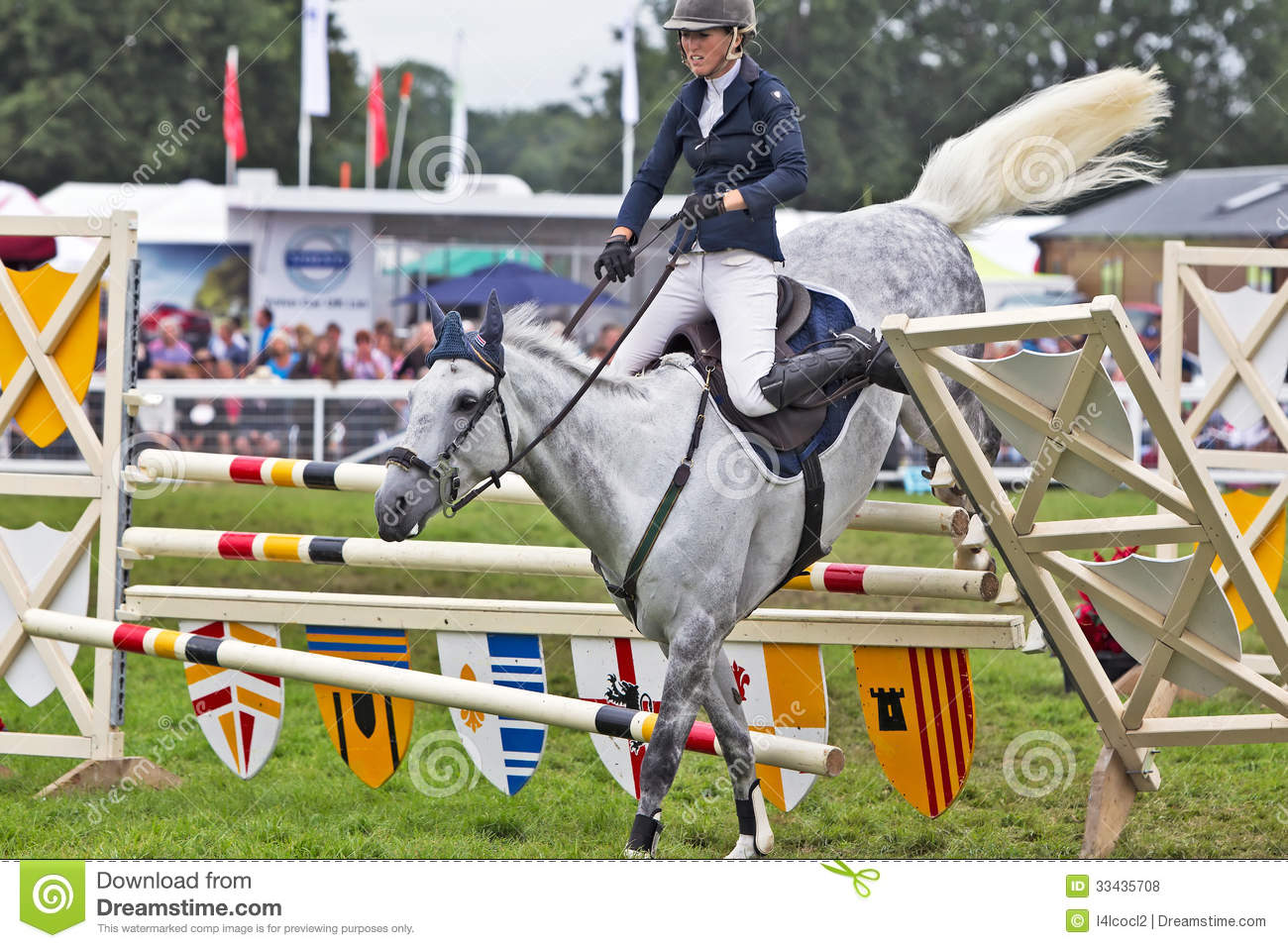 Horse Fail Photos 26 Free Wallpaper Funnypicture Org