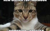 Funny Cat Selfies 27 High Resolution Wallpaper