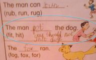 Funny Children's Answers To Exam Questions 5 Hd Wallpaper