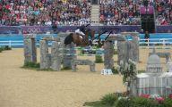 Horse Fail Photos 24 Free Hd Wallpaper