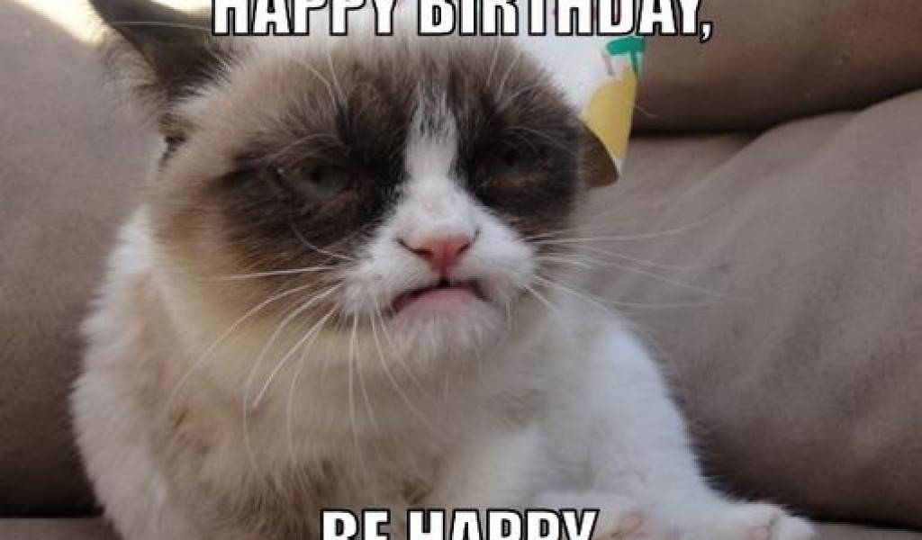 Funny Birthday Cat 15 Wide Wallpaper Funnypictureorg